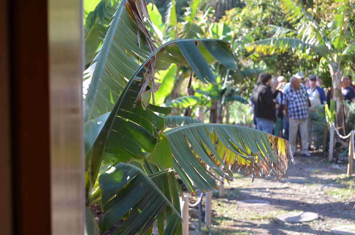 Group visit la gomera ethnographic park